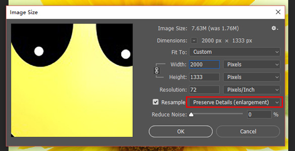 set preserve details in Image Size box.